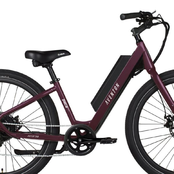 Step-through frame makes the Pace 350 one of the most accessible ebikes around.