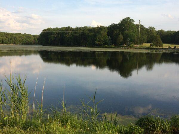 Walking along the lake at Darlington Park in New Jersey.